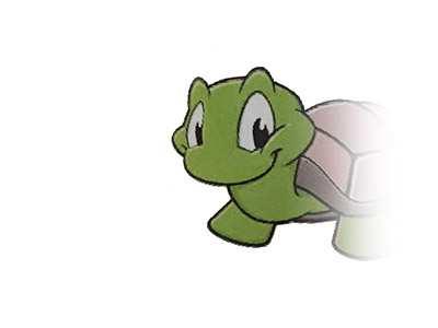 Logo der Gruppe Schildkröten